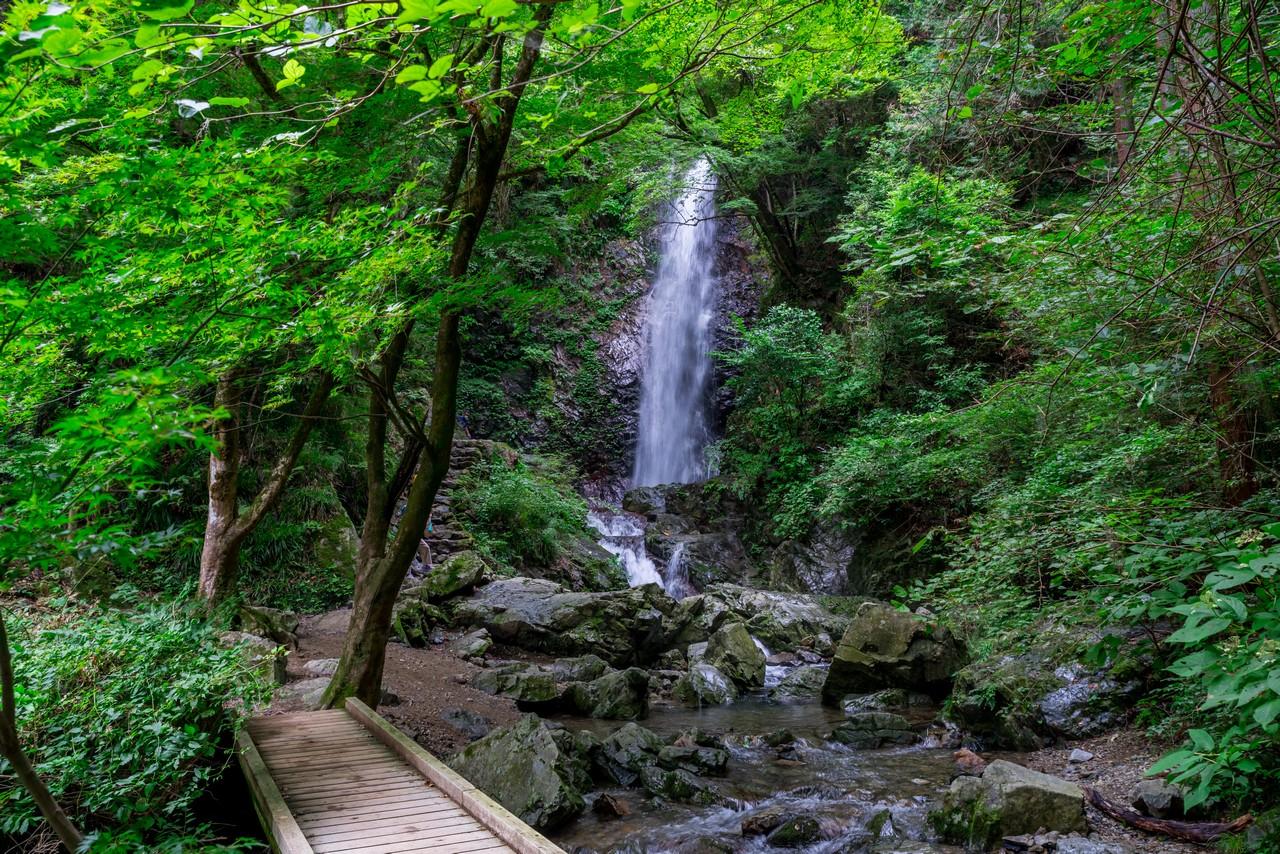 210821檜原村滝巡り-084
