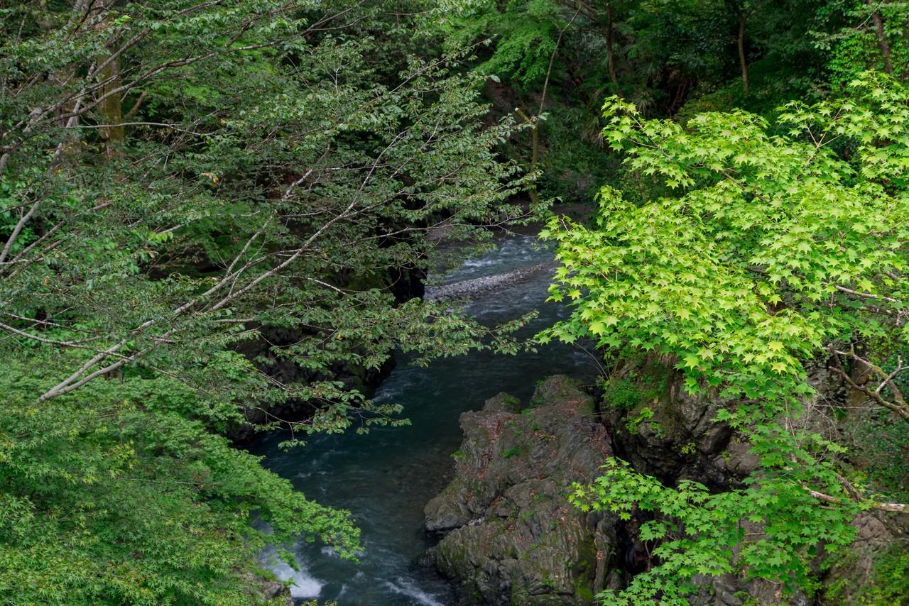 210821檜原村滝巡り-087
