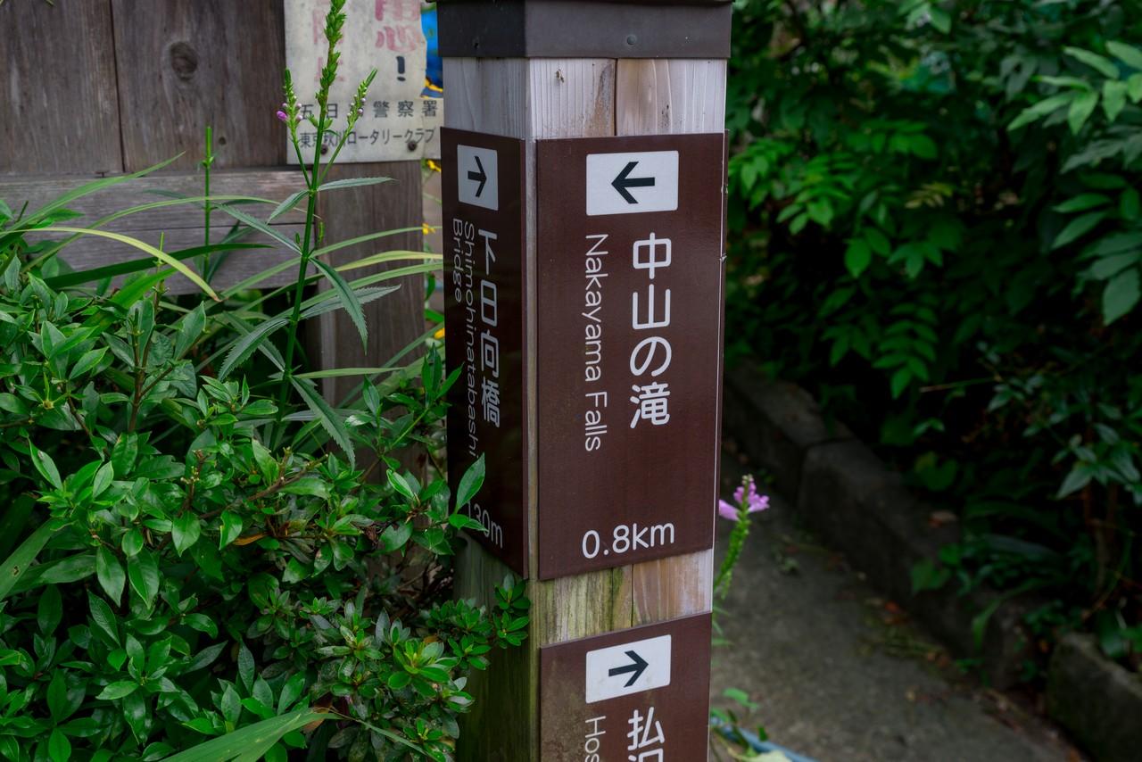 210821檜原村滝巡り-091