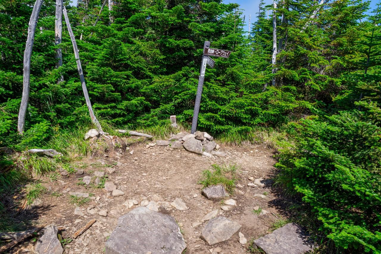 縞枯山の山頂