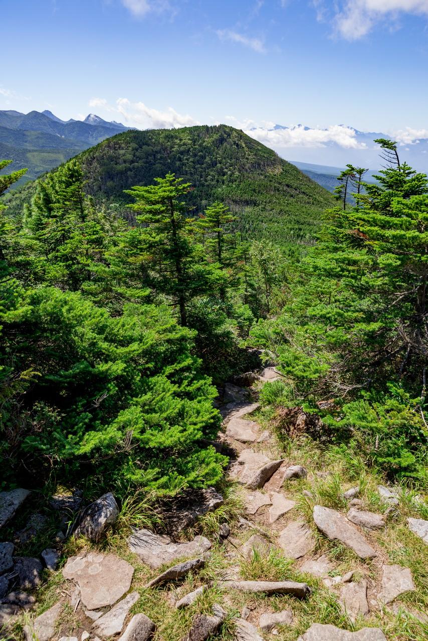 縞枯山から見た茶臼山