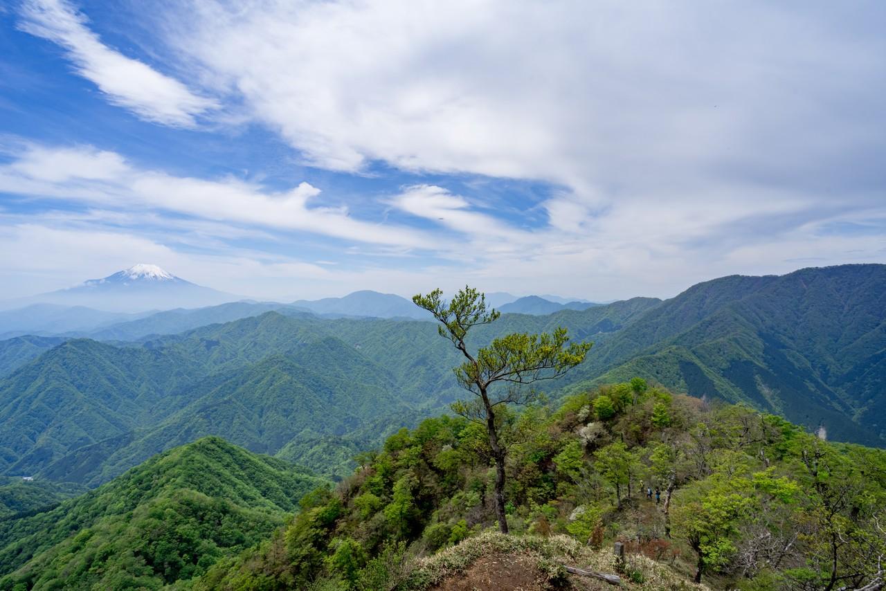 犬越路コースから見た富士山と西丹沢