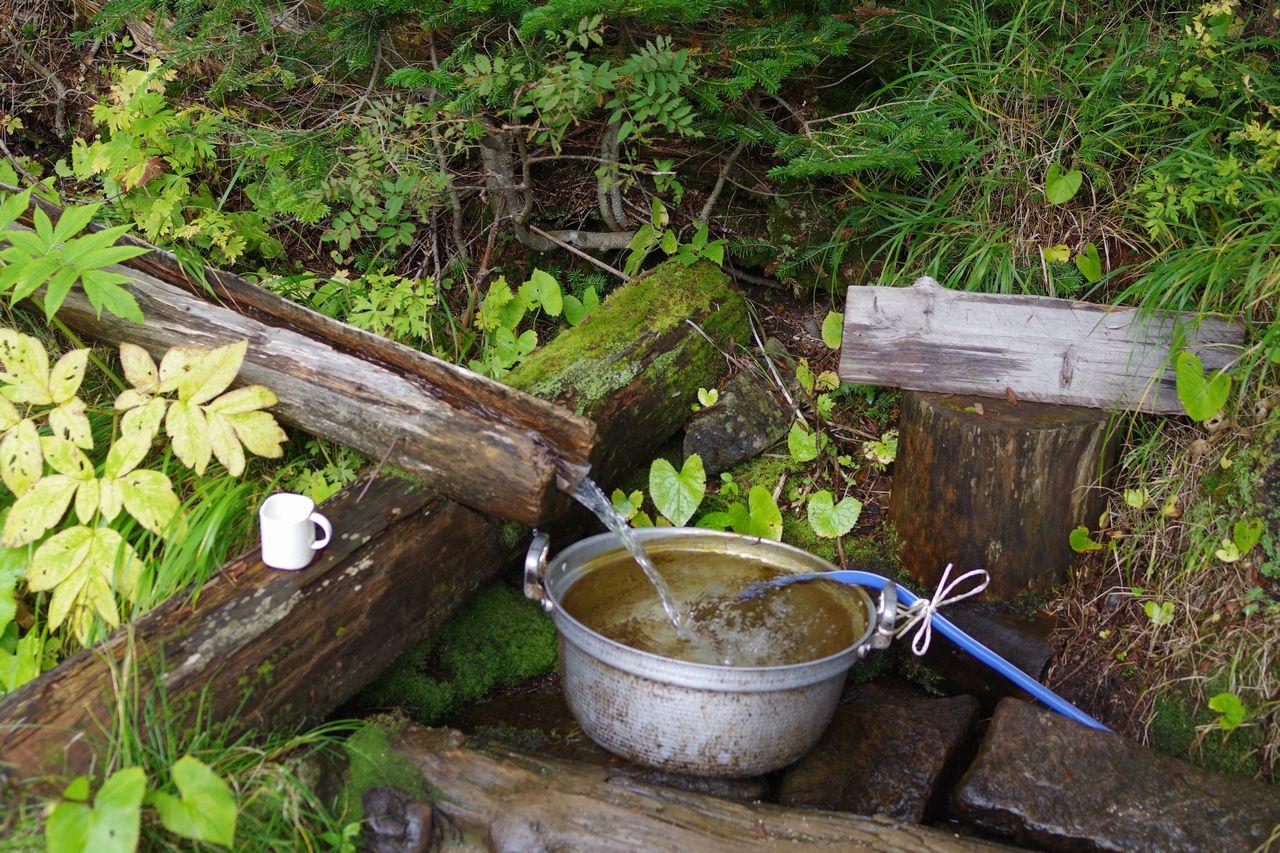 鳳凰山 南御室小屋の水場