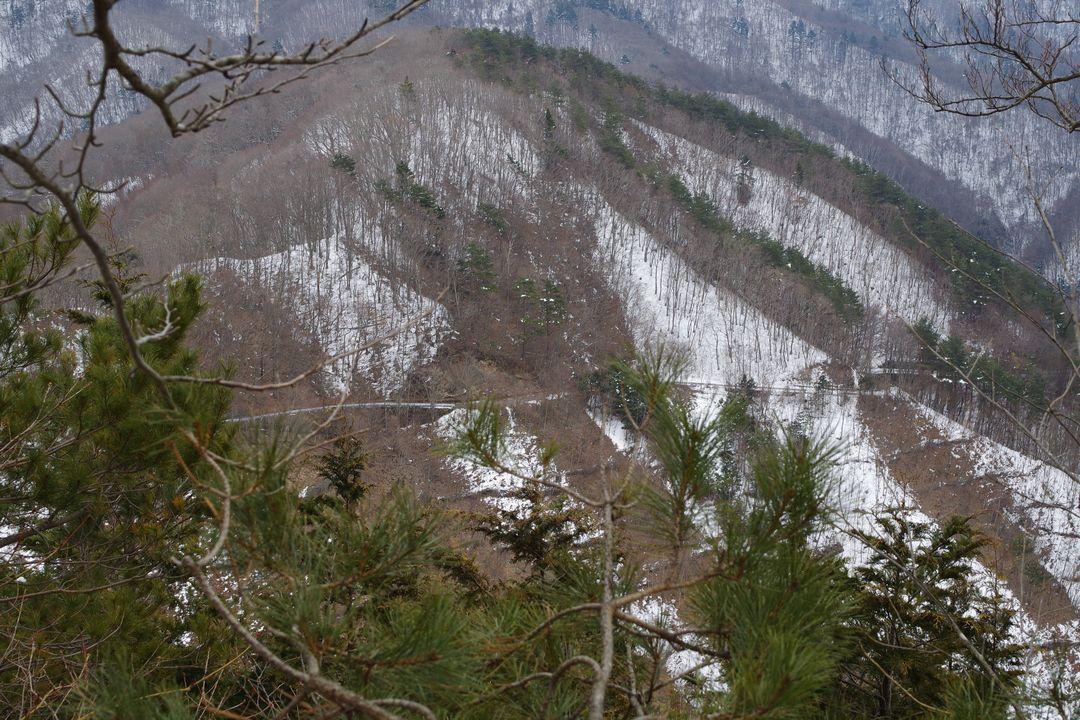 林道 蕪入沢上芦川線