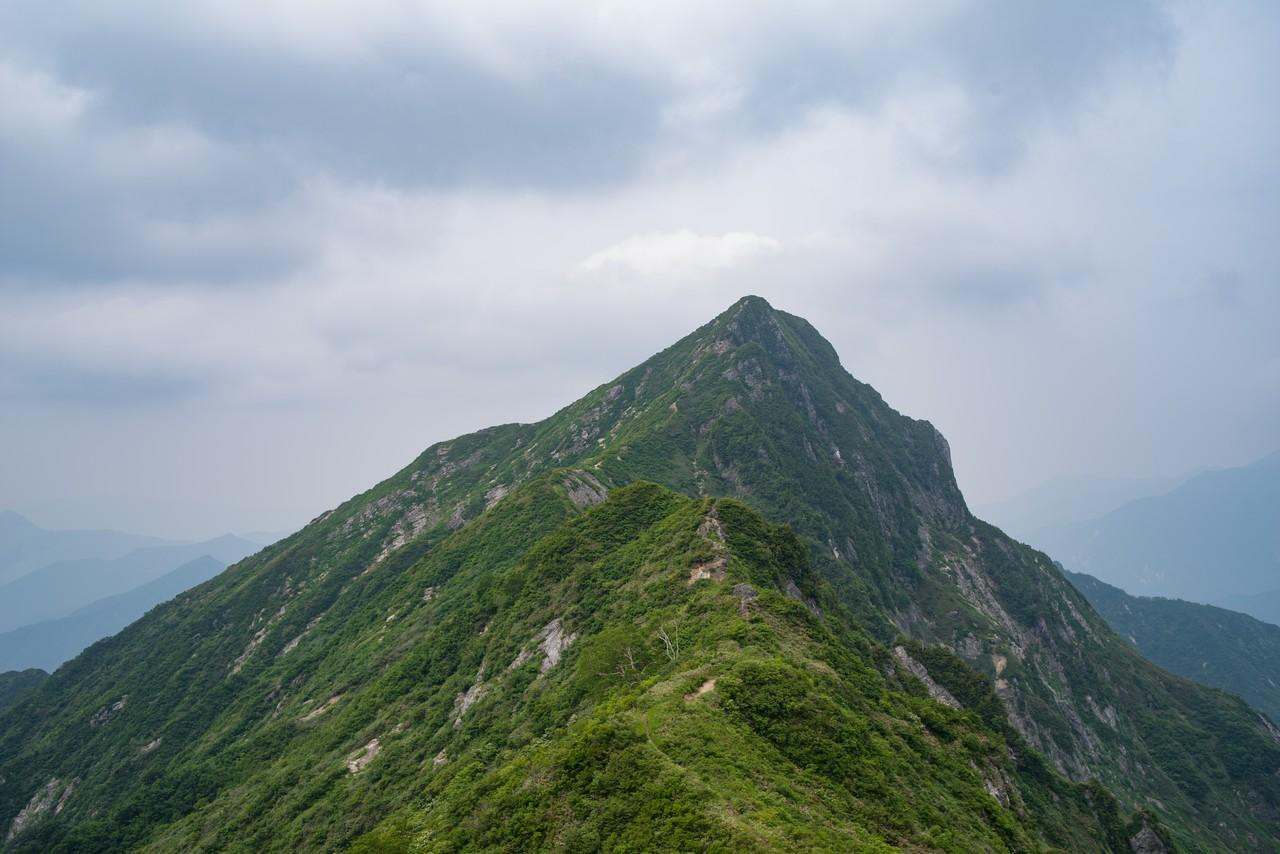 七ツ小屋山との鞍部から見た大源太山