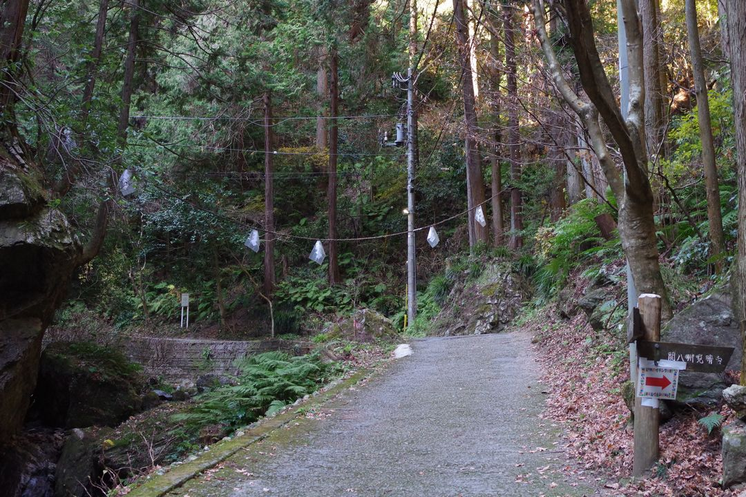 黒山三滝の関八州見晴台へと続く分岐地点