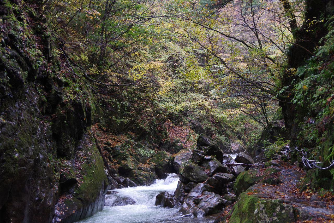 171029西沢渓谷_055