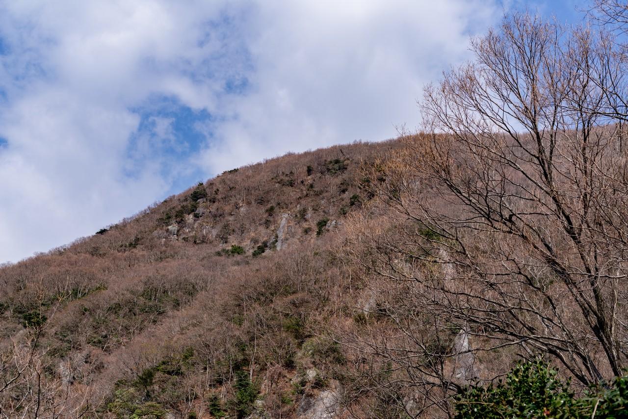 190223幕山_040