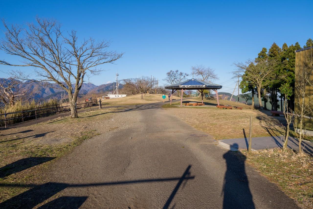 200320大野山_0063