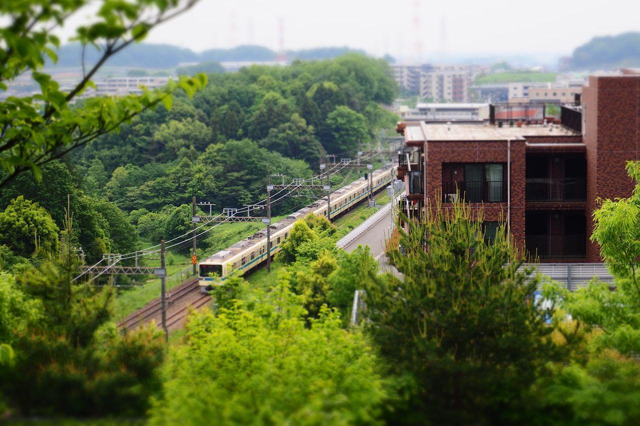 多摩よこやまの道から見た小田急線