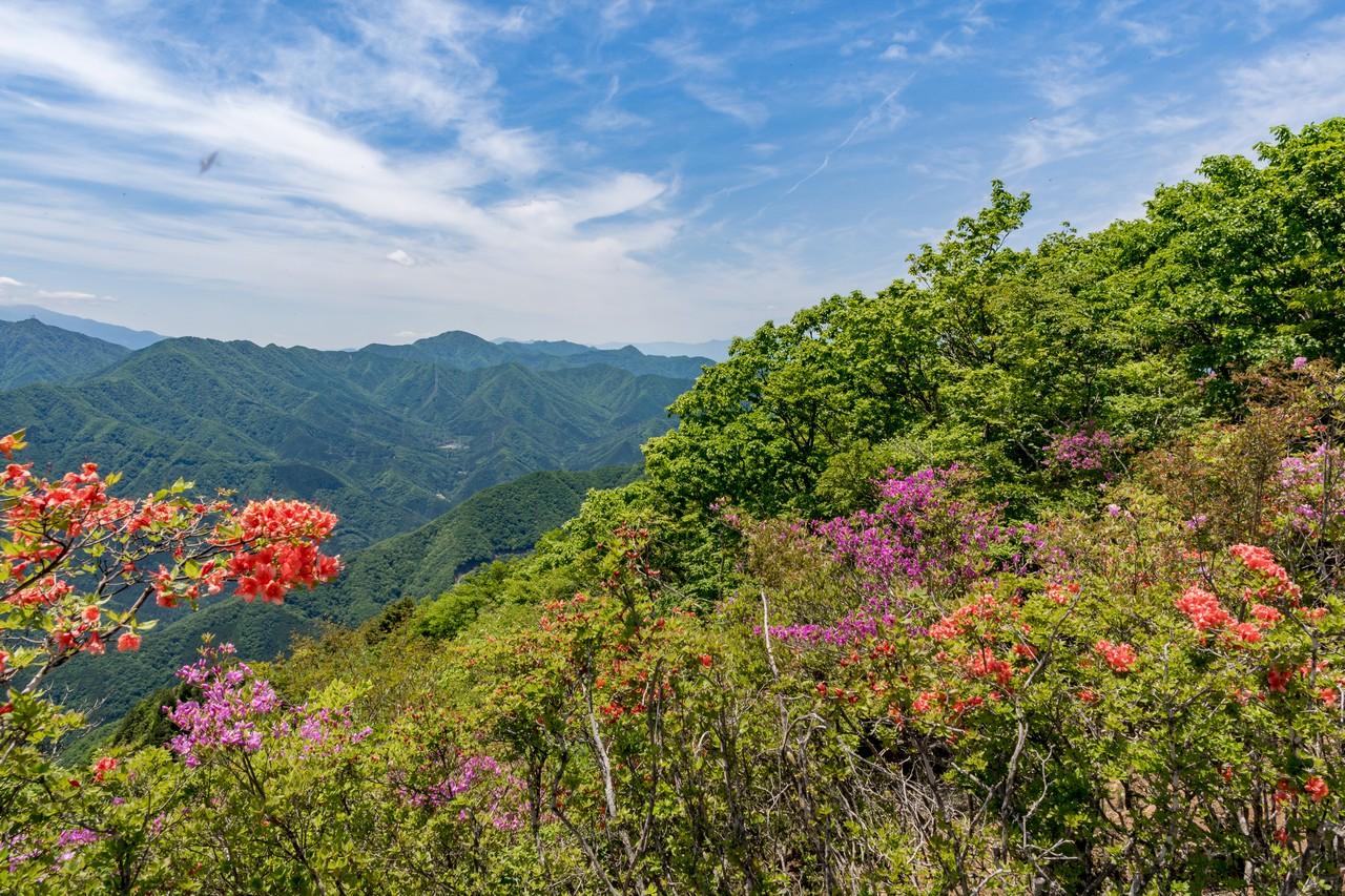 170603滝子山_058