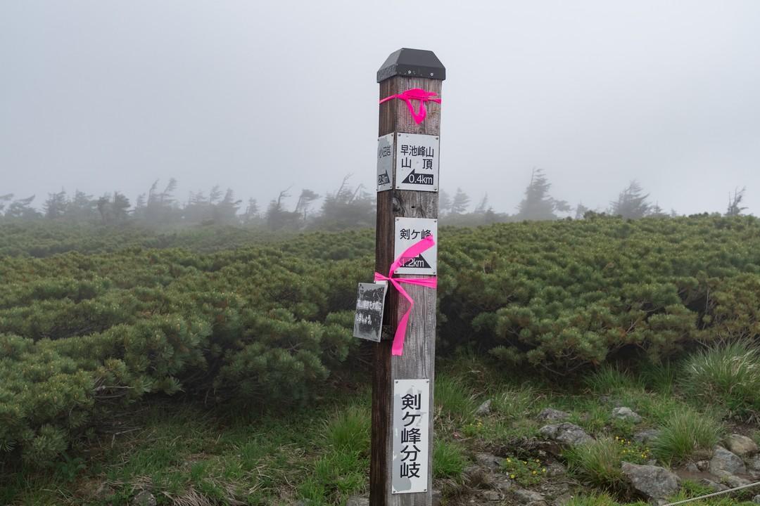 170702早池峰山_052