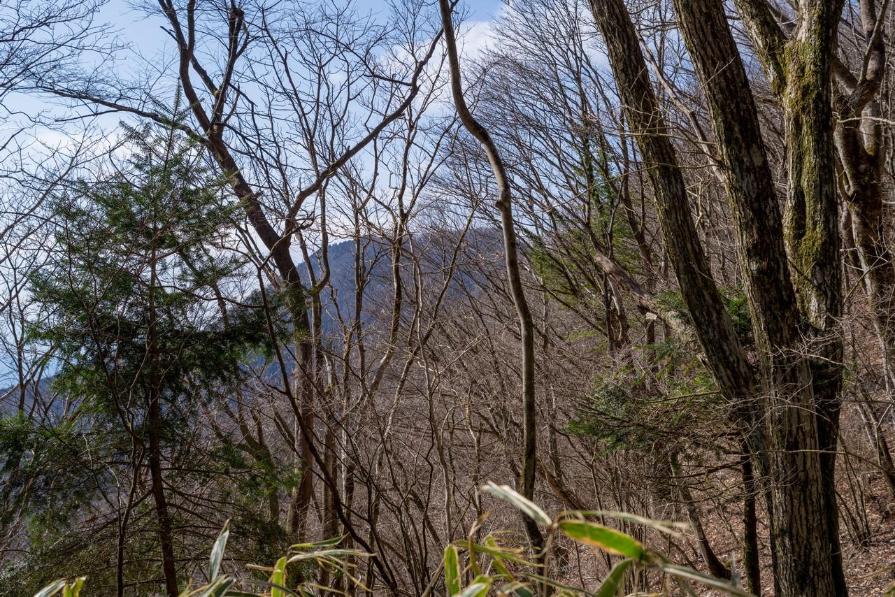 200229長者ヶ岳_033