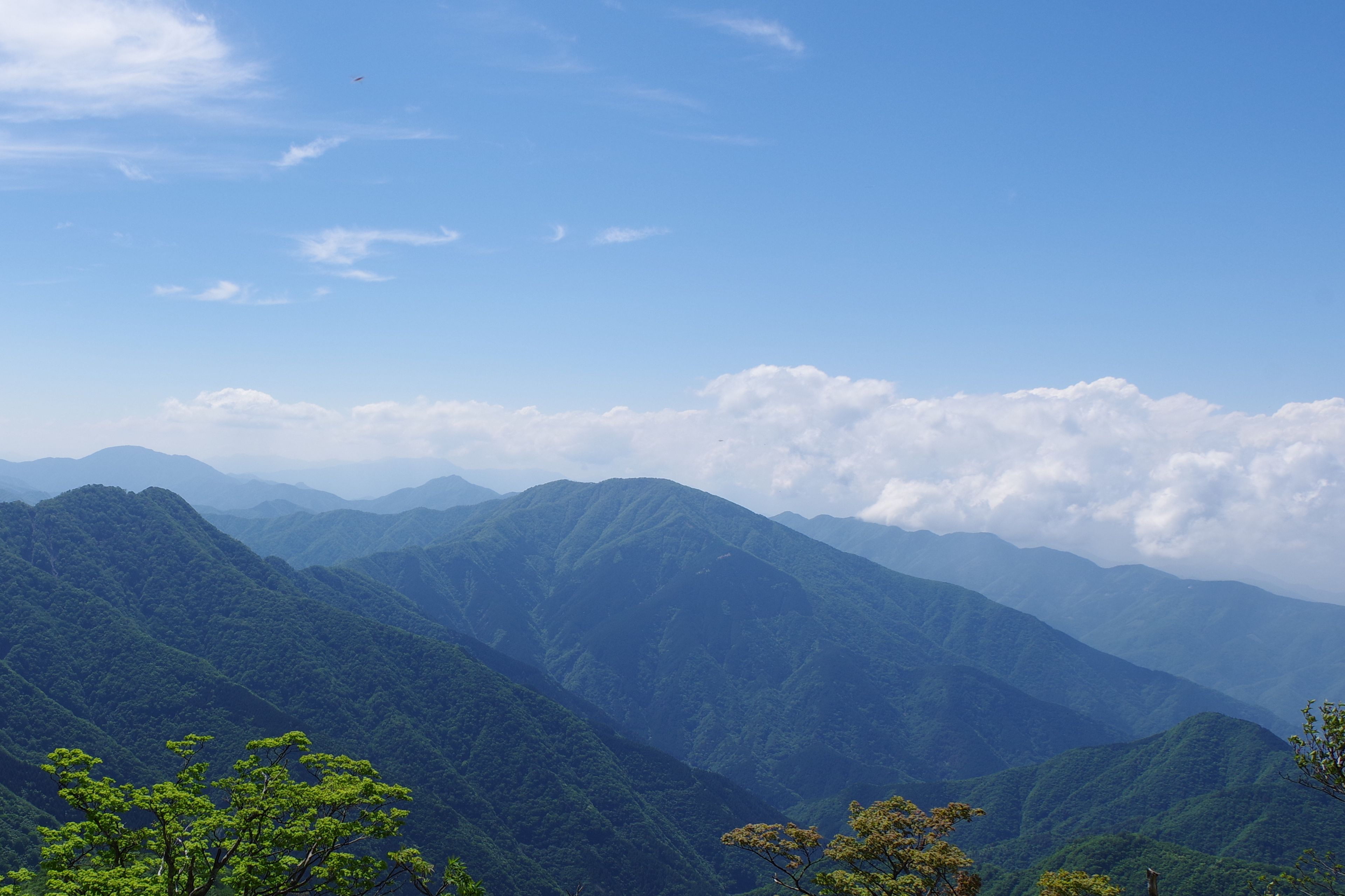 蛭ヶ岳の山腹から見た大室山