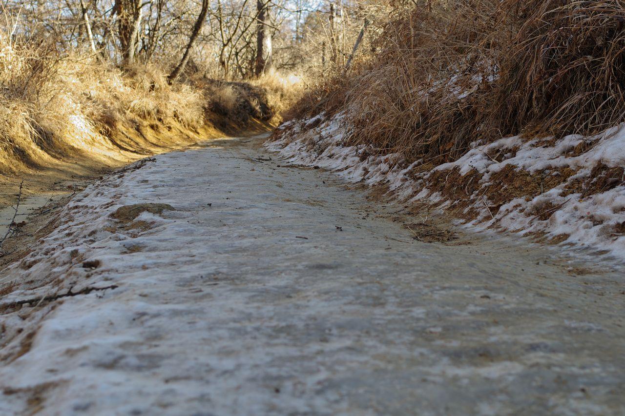 凍結した登山道