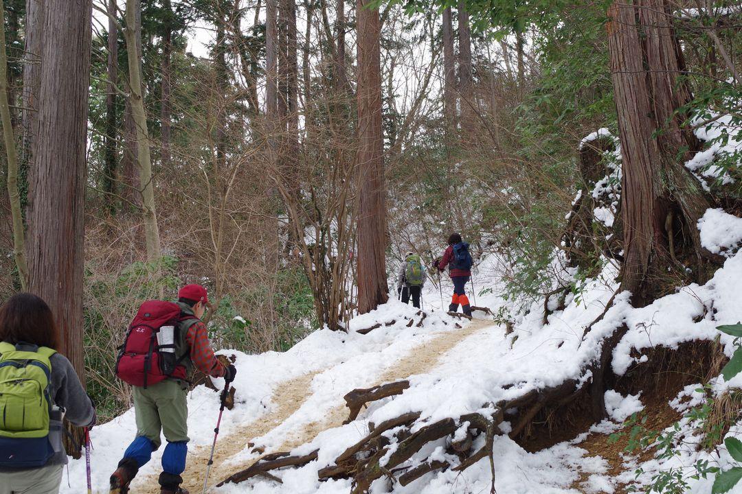 高尾山 積雪時の稲荷山コース