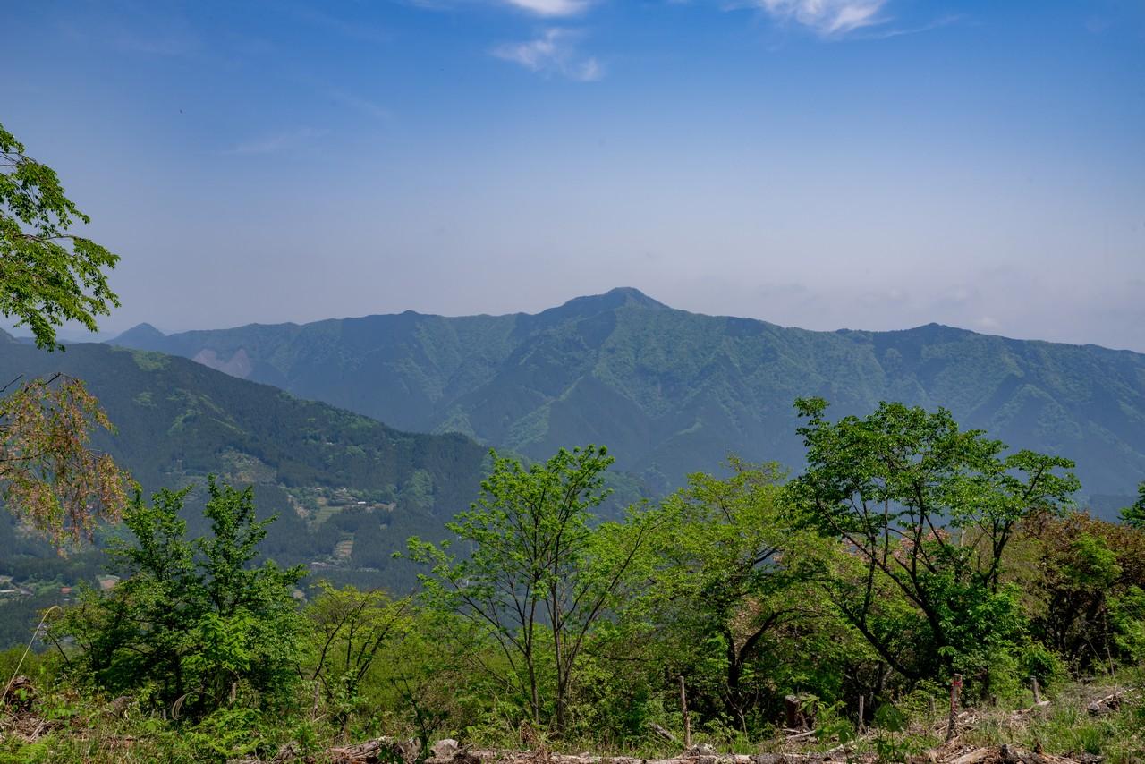 浅間尾根から見た大岳山