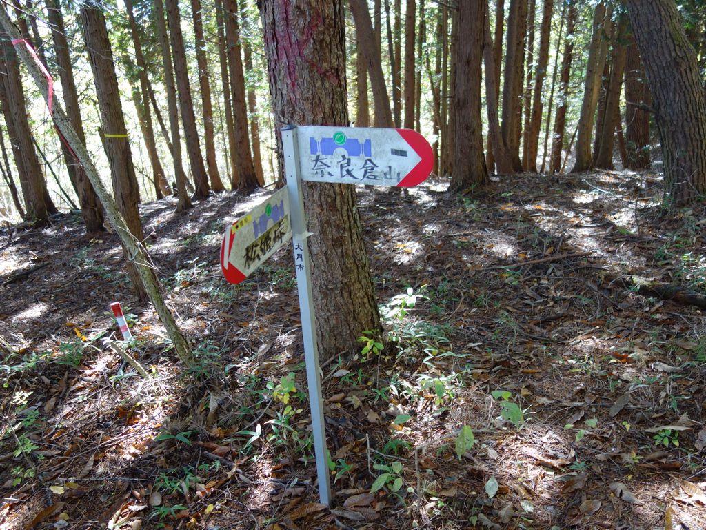 161103奈良倉山_014