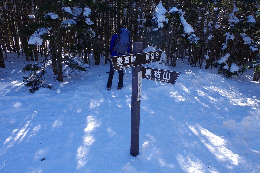 茶臼山の山頂