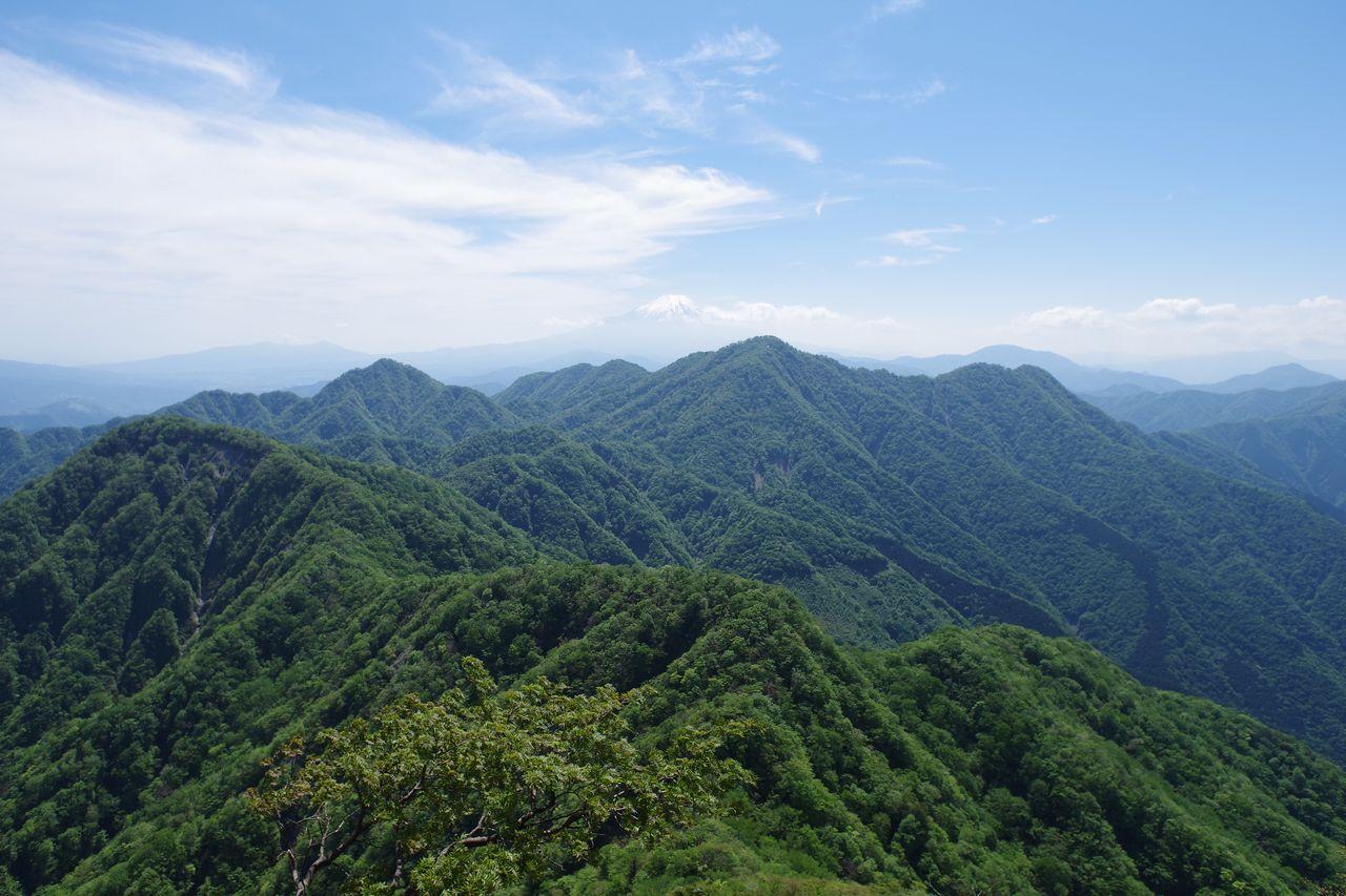 蛭ヶ岳から見た丹沢主稜