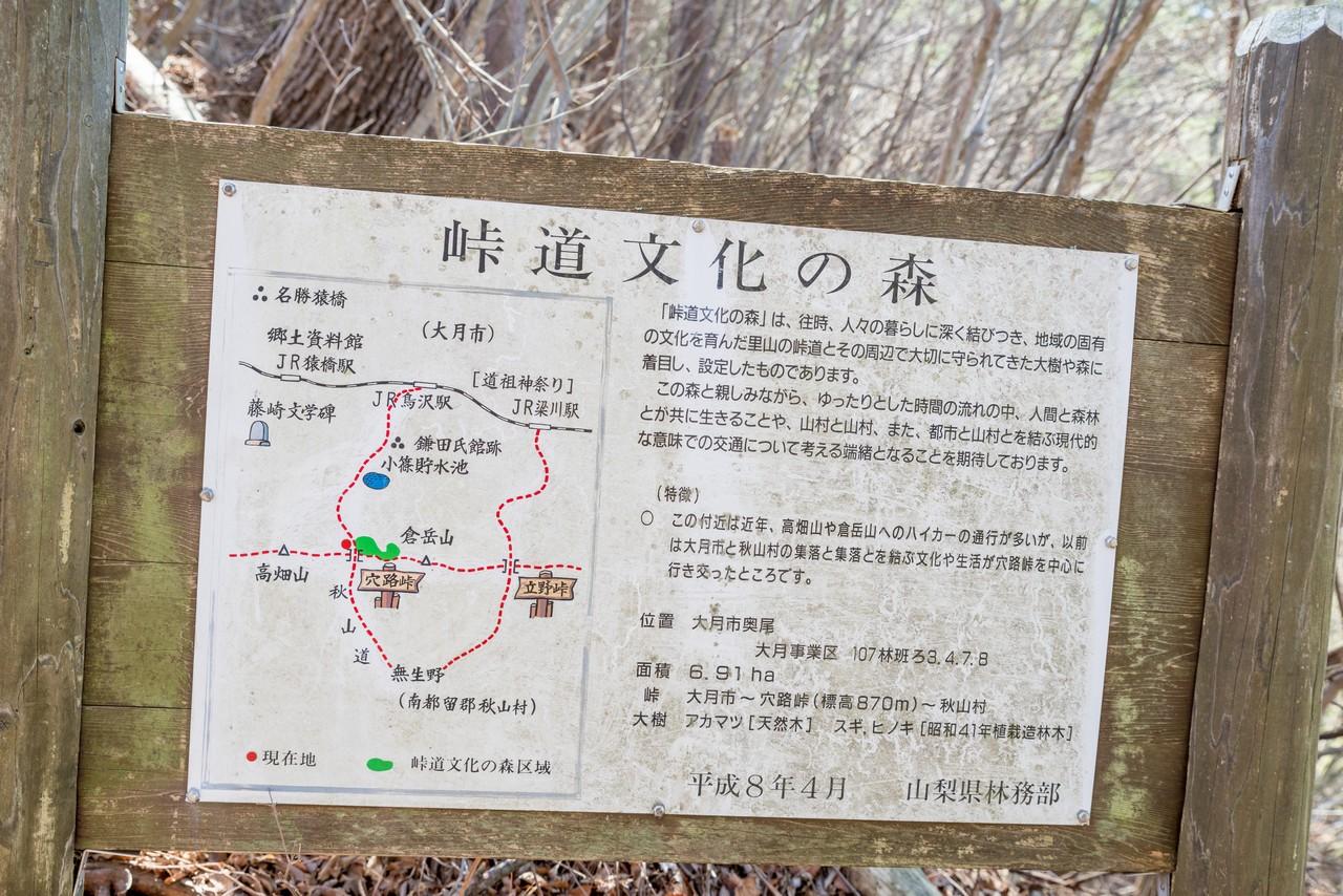 190324倉岳山_055