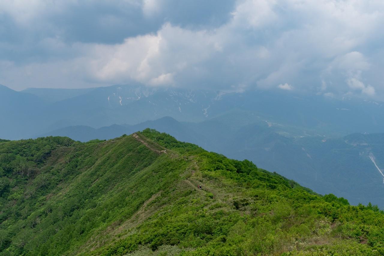 170624仙ノ倉山_038