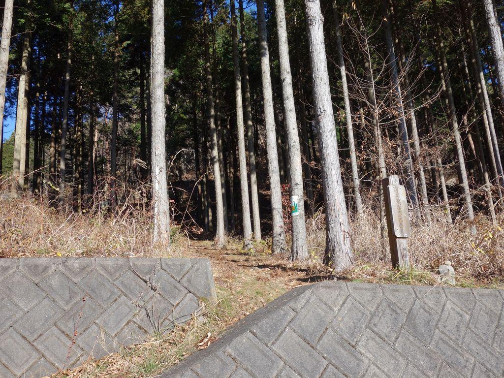 鶴峠の三頭山登山口