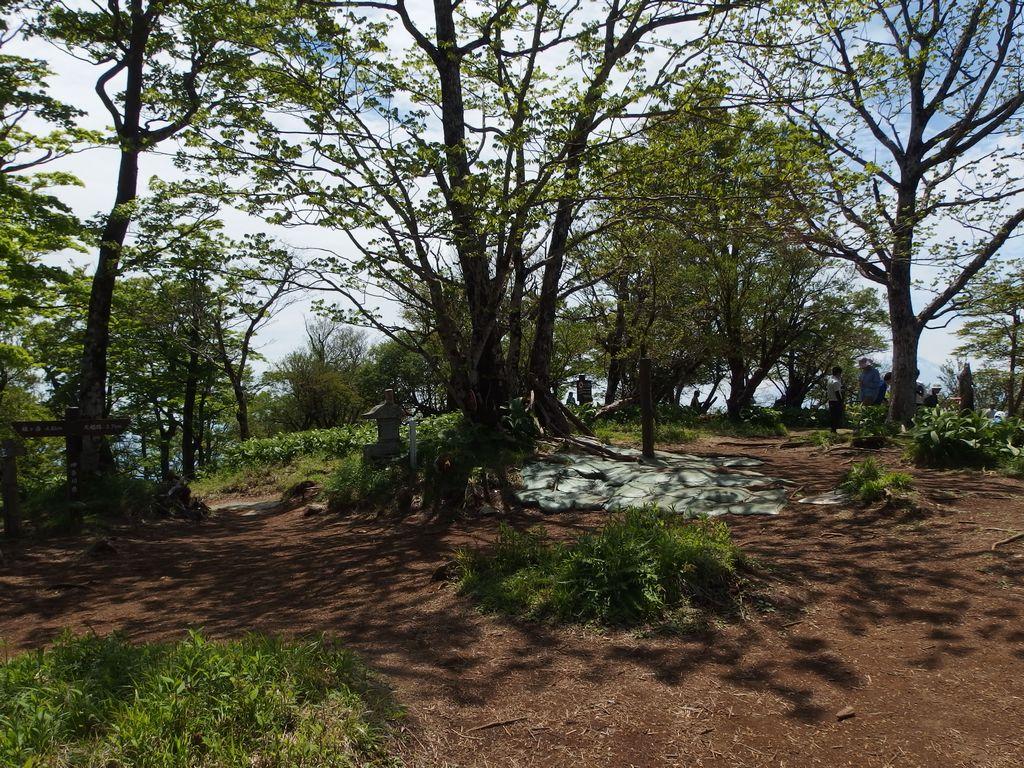 檜洞丸 山頂の様子