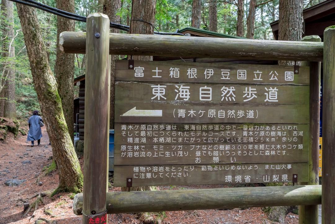 190503三湖台_041