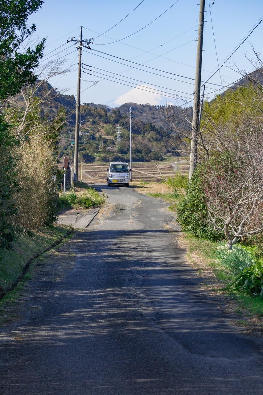 200209伊予ヶ岳_084