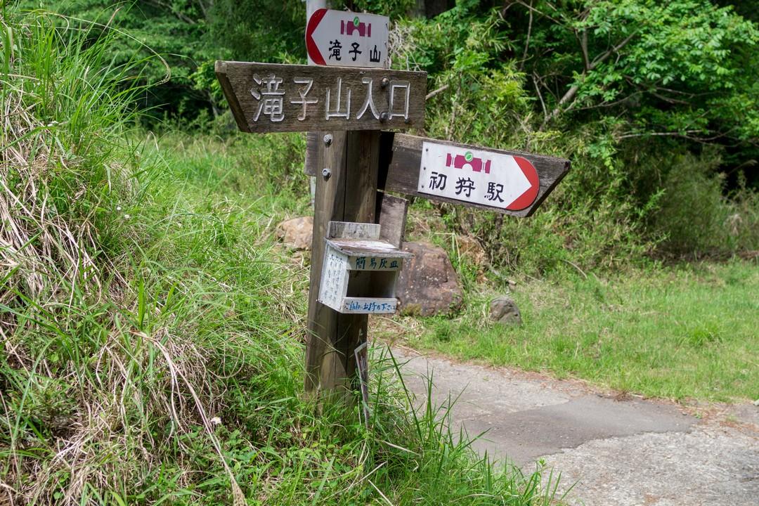 170603滝子山_073