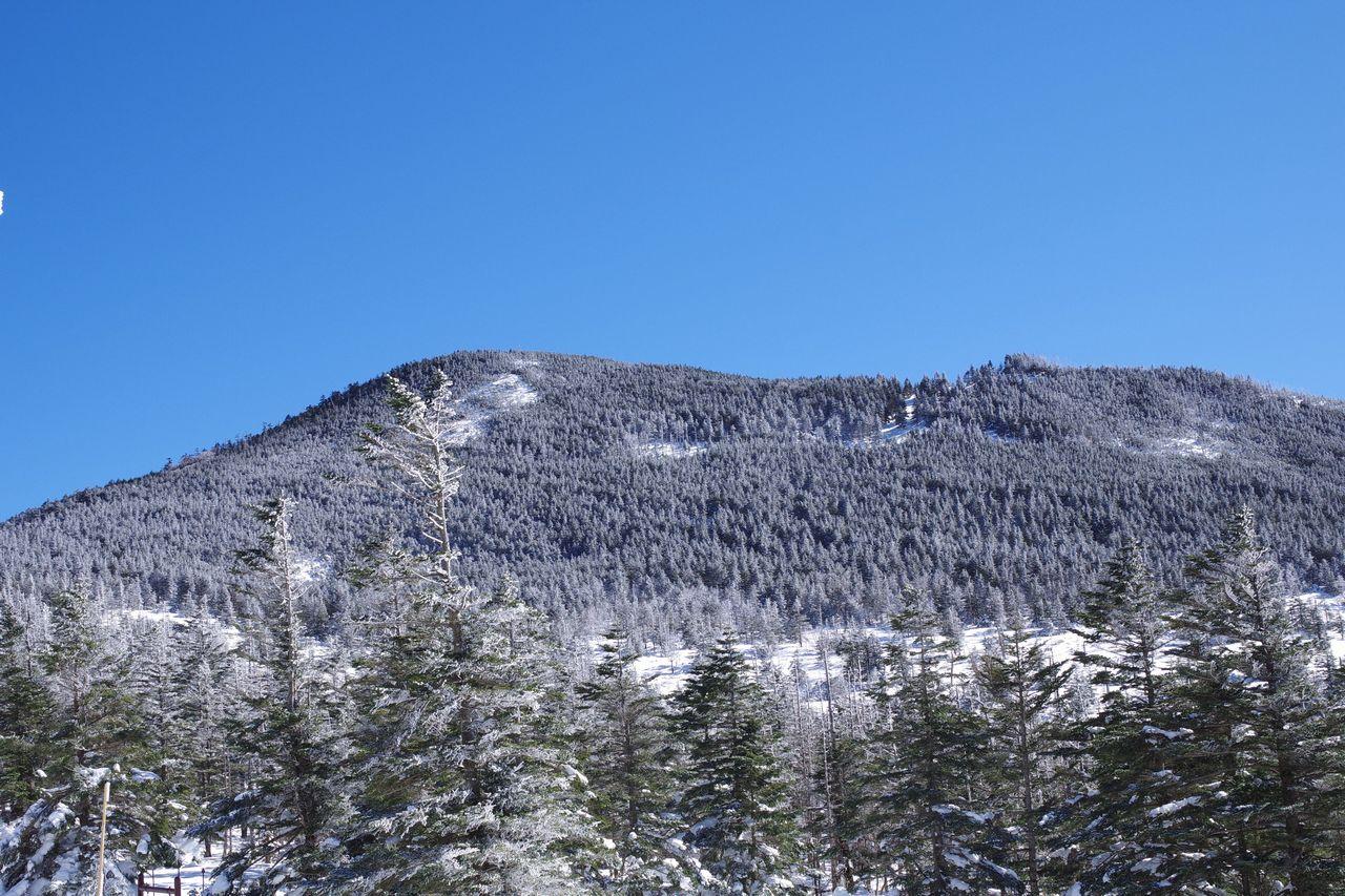 北八ヶ岳 坪庭から見た縞枯山