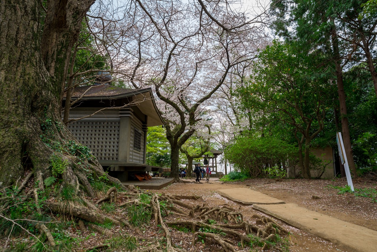 200405高取山_085