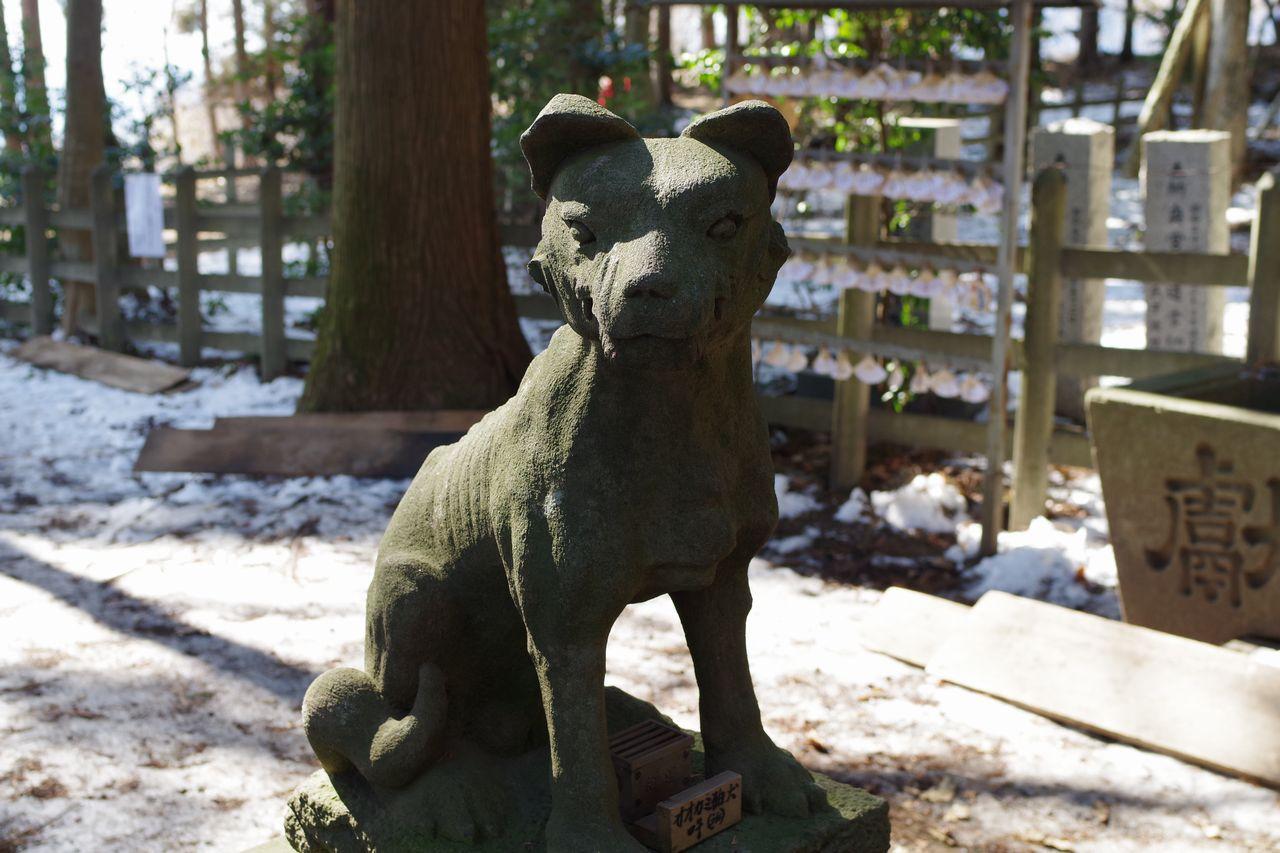 宝登山神社の狛犬