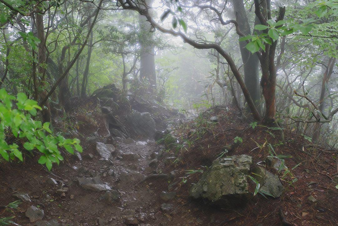 大岳山 山頂直下の登山道