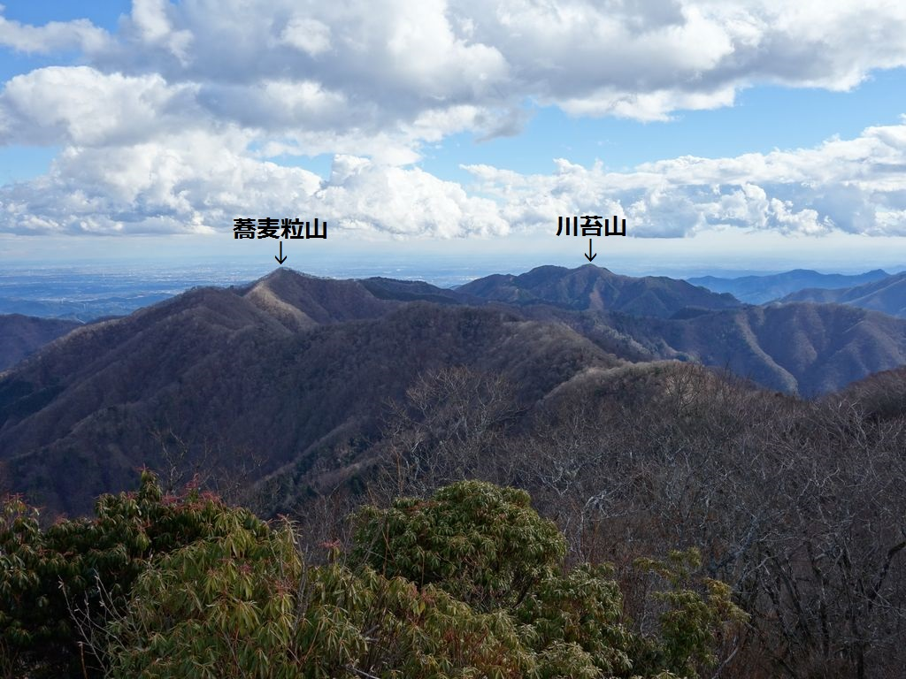 天目山から見た蕎麦粒山と川苔山