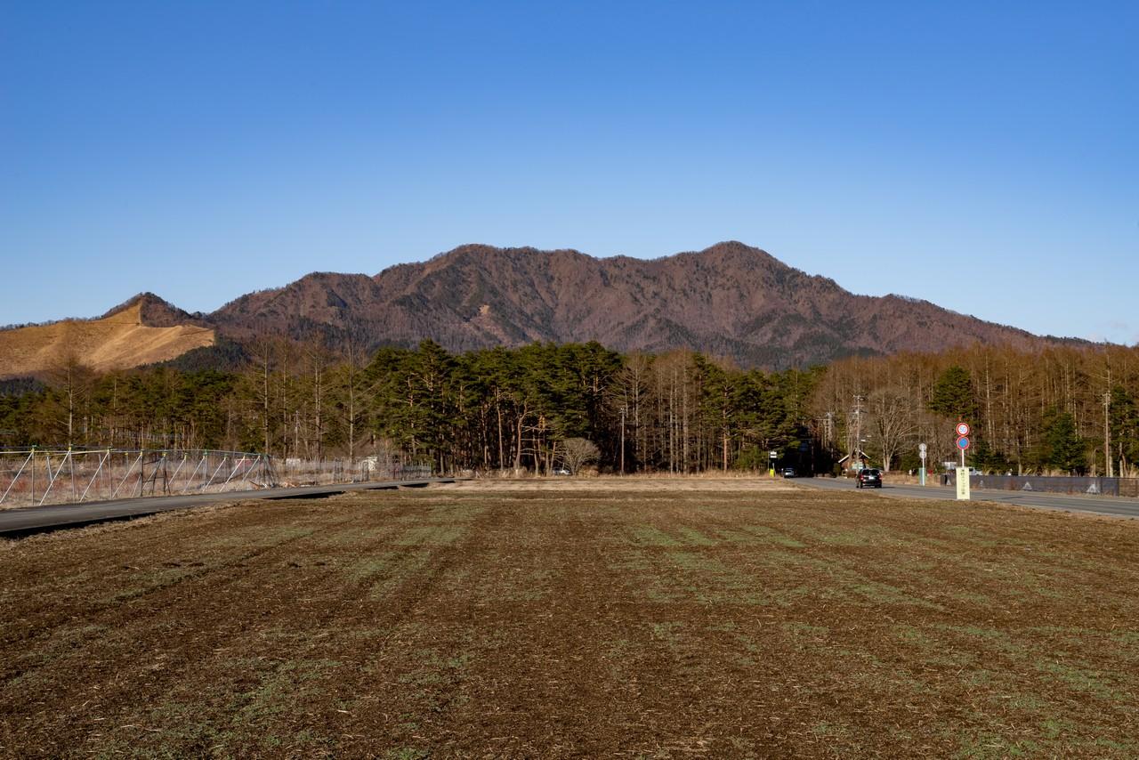 花の都公園から見た杓子山