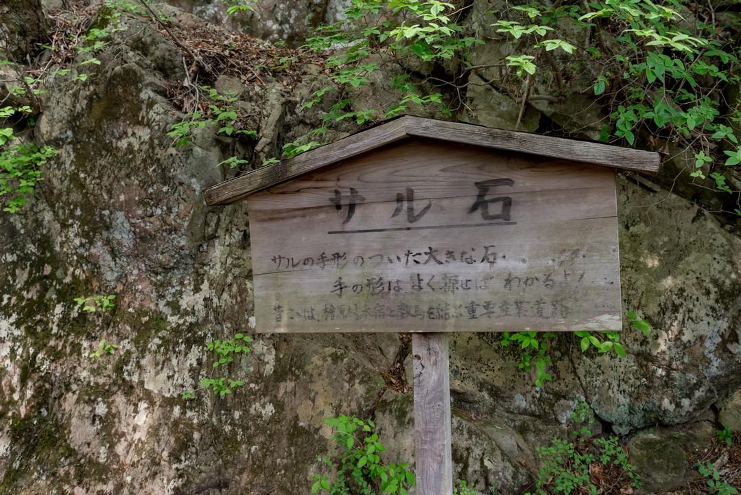 190512浅間嶺_091