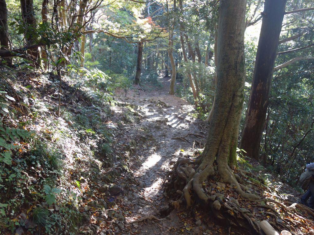 琵琶滝方面への下り