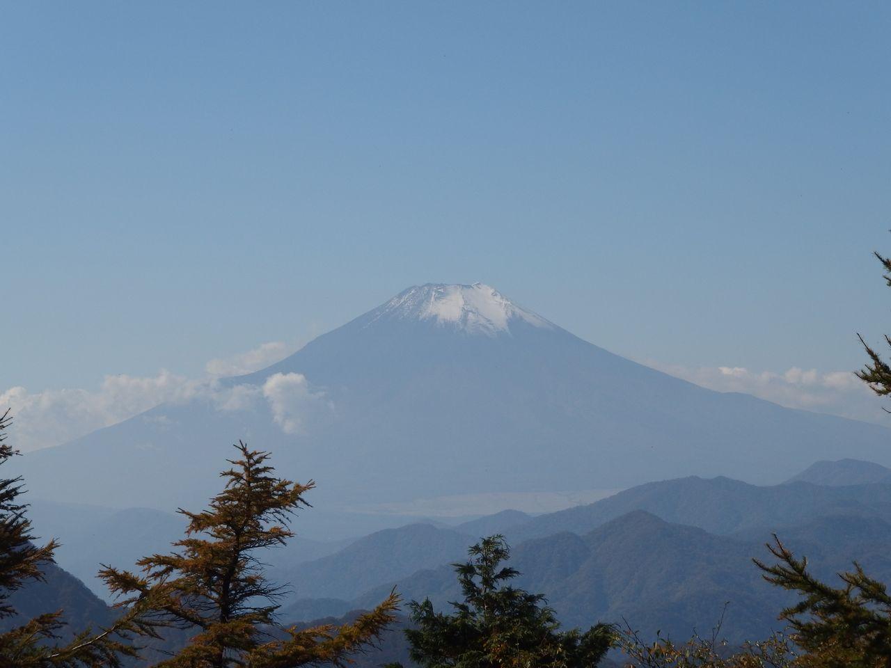 丹沢 姫次から見た富士山