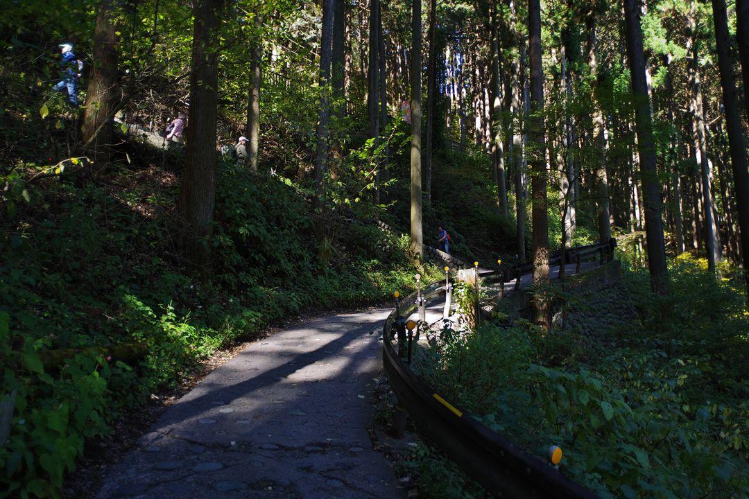 御岳山 ケーブルカー駅へ続く舗装路