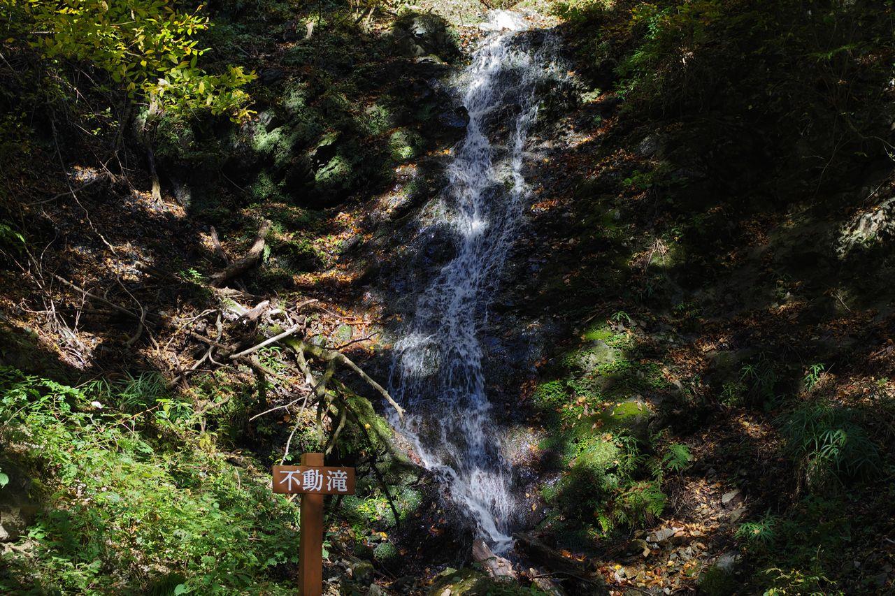 武甲山 不動の滝