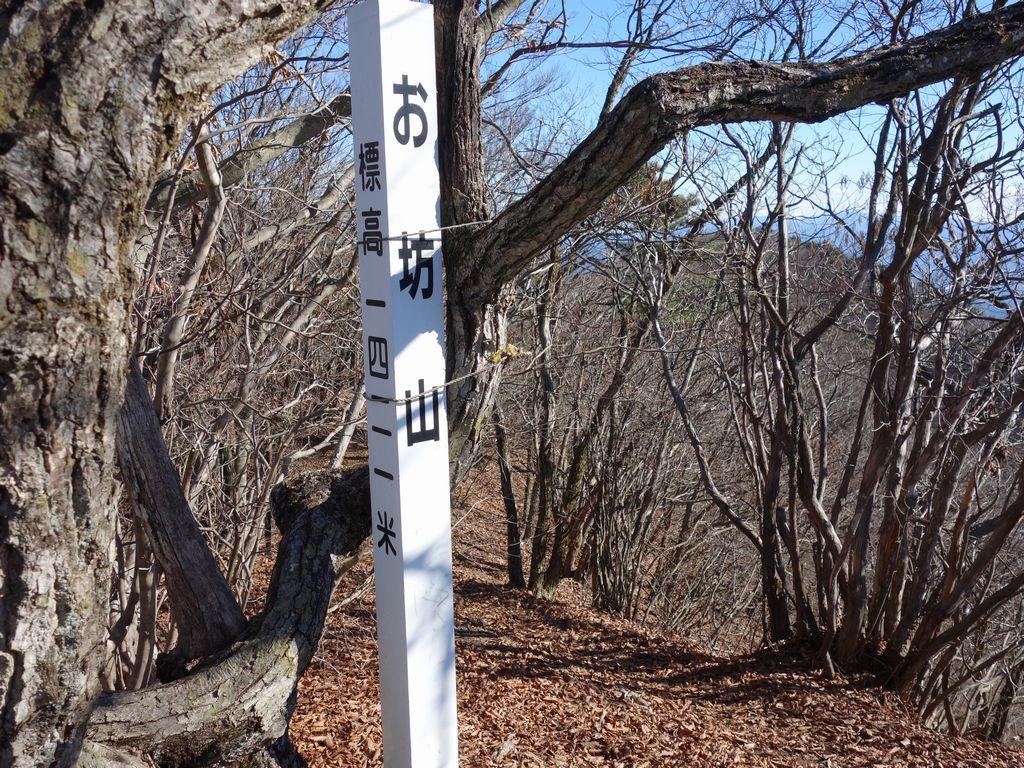 お坊山の山頂標識