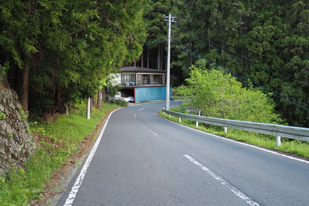 二子山 坂本へと向かう国道299号