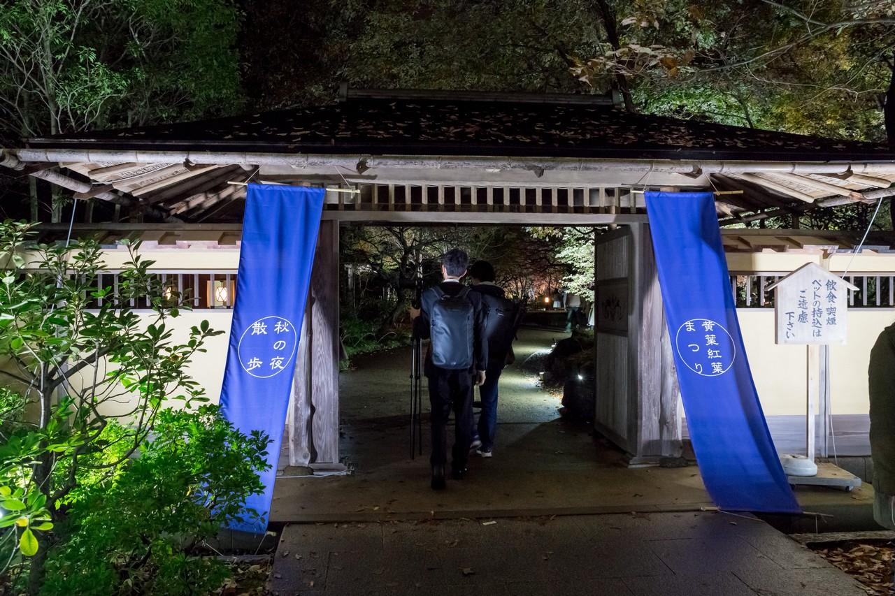 191124昭和記念公園_028