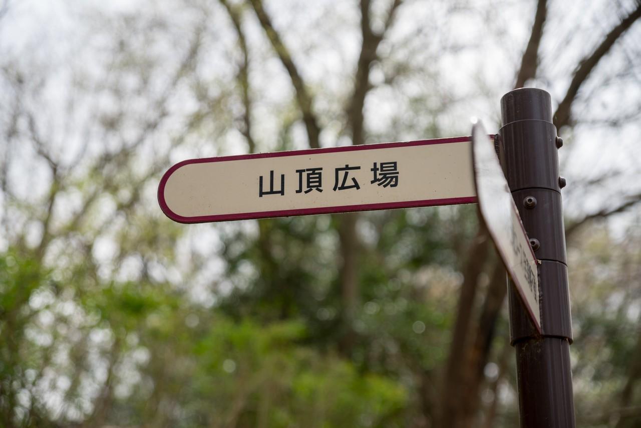 200328七生丘陵_075