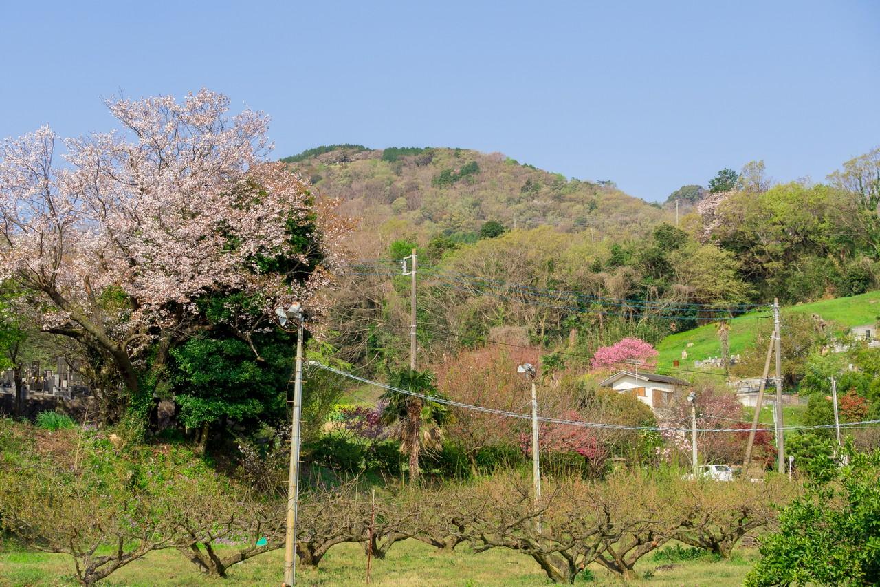 200405高取山_019