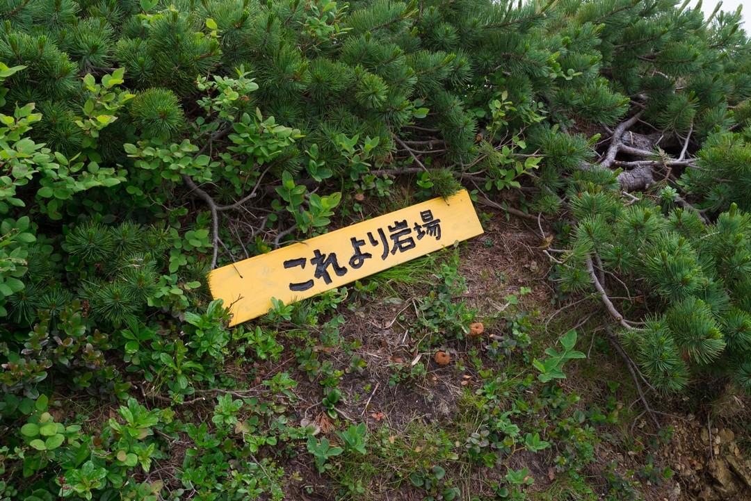 190804五竜岳_081