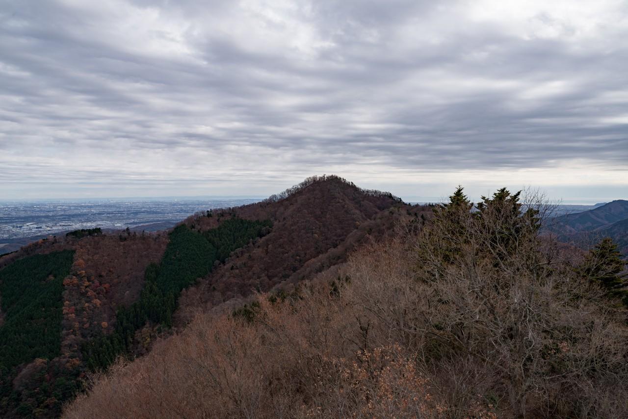 高取山から見た仏果山