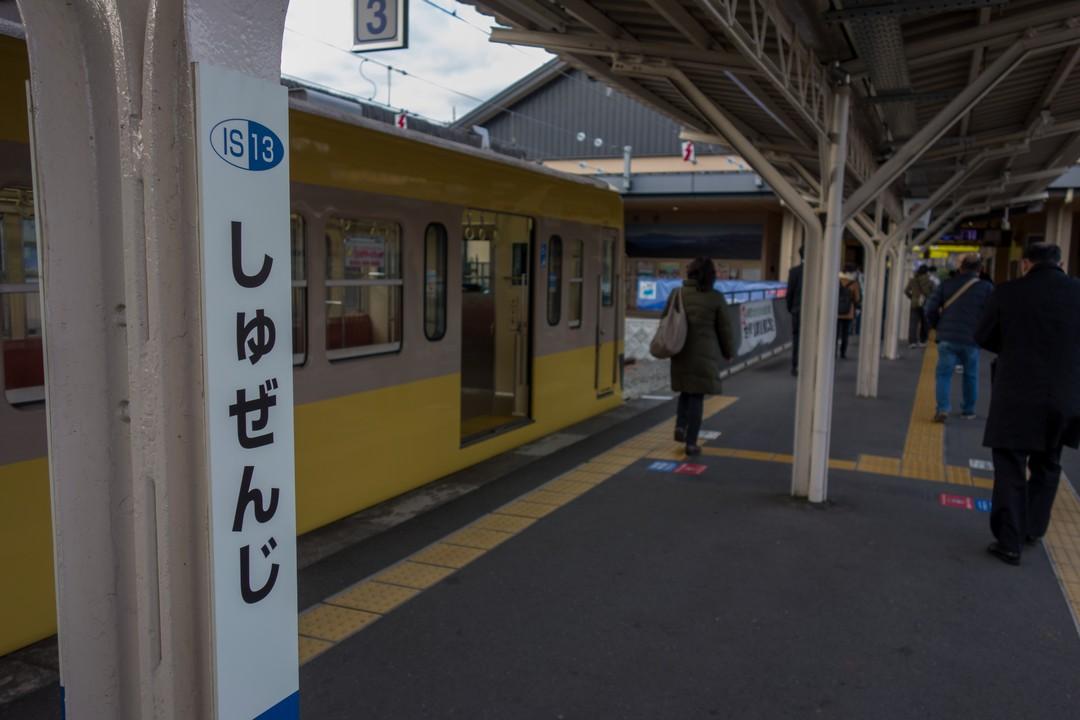 190104達磨山_011